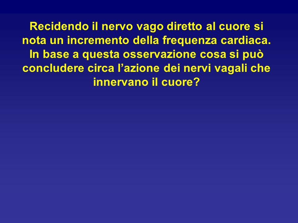 Recidendo il nervo vago diretto al cuore si nota un incremento della frequenza cardiaca. In base a questa osservazione cosa si può concludere circa la