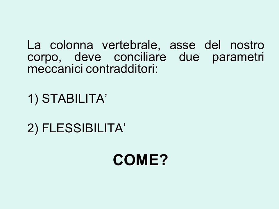 La colonna vertebrale, asse del nostro corpo, deve conciliare due parametri meccanici contradditori: 1) STABILITA 2) FLESSIBILITA COME?