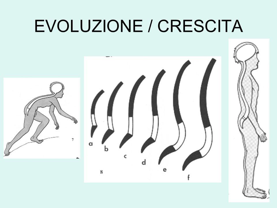 EVOLUZIONE / CRESCITA