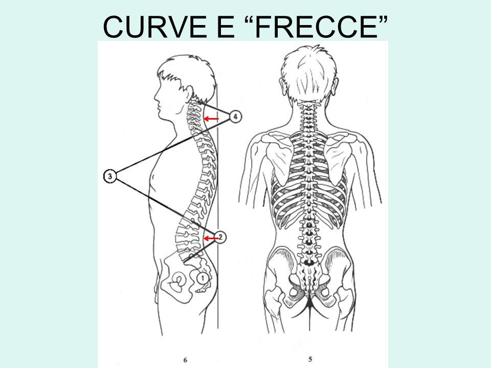 CURVE E FRECCE