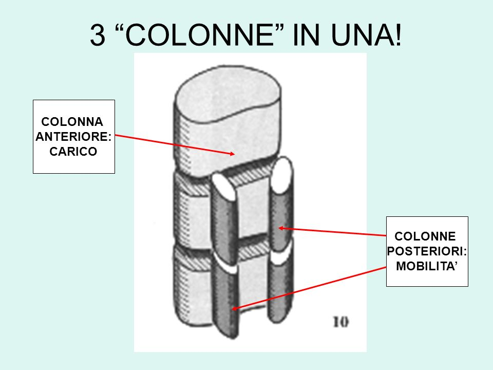 3 COLONNE IN UNA! COLONNA ANTERIORE: CARICO COLONNE POSTERIORI: MOBILITA