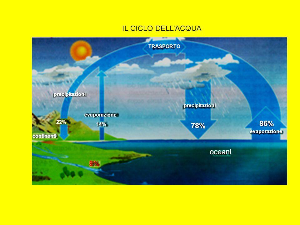 precipitazioni evaporazione oceani IL CICLO DELLACQUA TRASPORTO continenti 22% 14% 78% 86% 8%