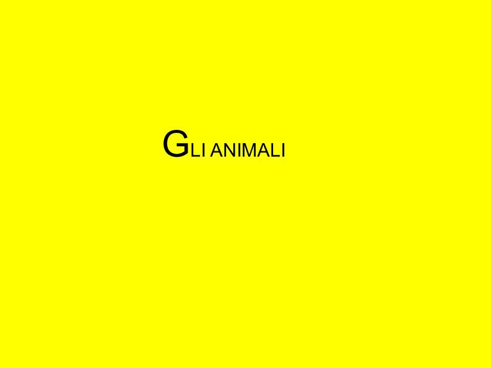 G LI ANIMALI