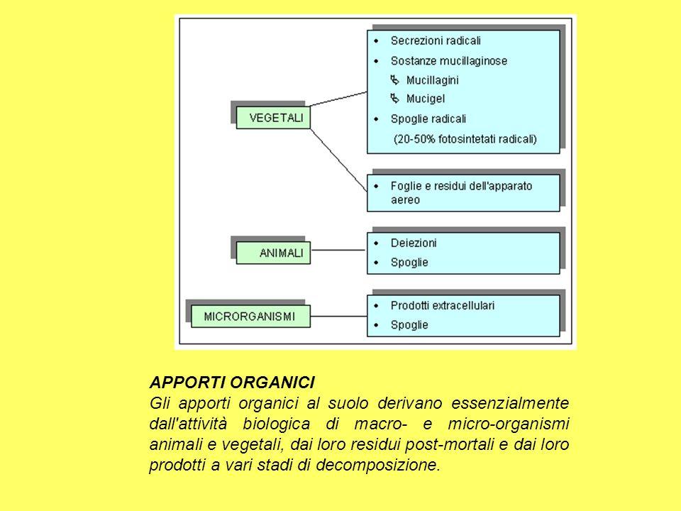 APPORTI ORGANICI Gli apporti organici al suolo derivano essenzialmente dall'attività biologica di macro- e micro-organismi animali e vegetali, dai lor