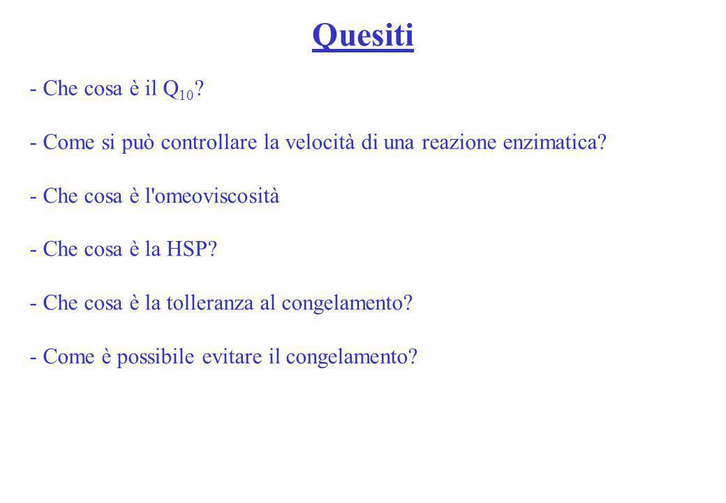Quesiti - Che cosa è il Q 10 ? - Come si può controllare la velocità di una reazione enzimatica? - Che cosa è l'omeoviscosità - Che cosa è la HSP? - C