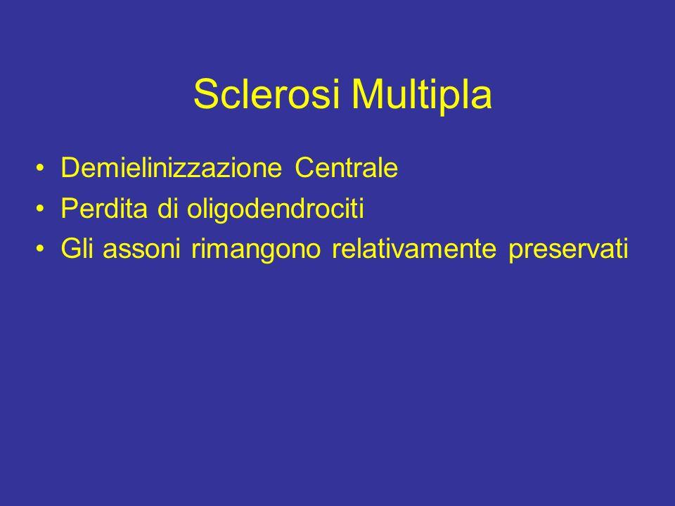 Effetto della Perdita della Mielina