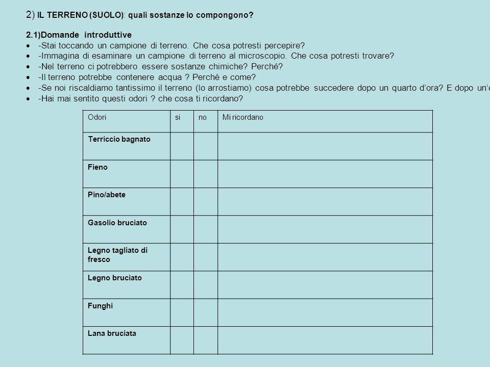 2) IL TERRENO (SUOLO): quali sostanze lo compongono? 2.1)Domande introduttive -Stai toccando un campione di terreno. Che cosa potresti percepire? -Imm