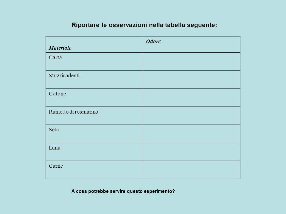 Riportare le osservazioni nella tabella seguente: Materiale Odore Carta Stuzzicadenti Cotone Rametto di rosmarino Seta Lana Carne A cosa potrebbe serv