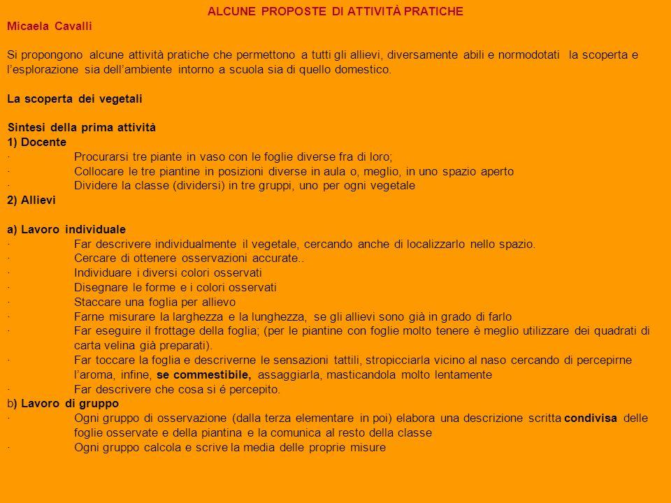 2.1) LE FOGLIE 2.1.1) luogo:Aula tipologia: attività di percezione, di descrizione e di misura Lattività proposta può essere iniziata in un ambiente chiuso (aula).