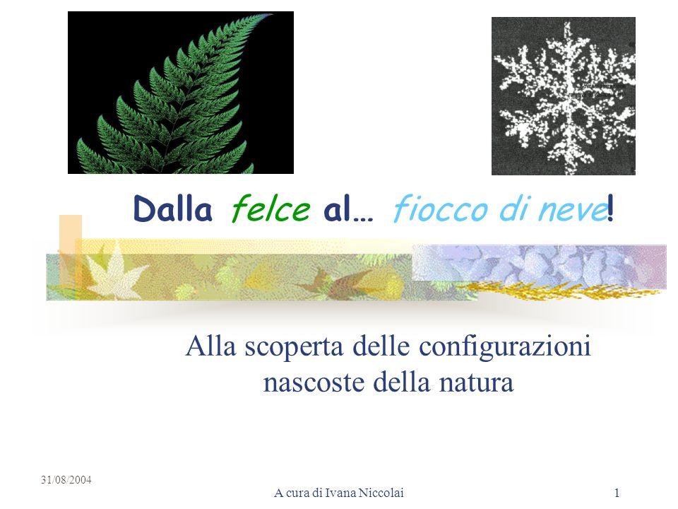A cura di Ivana Niccolai1 Dalla felce al… fiocco di neve! Alla scoperta delle configurazioni nascoste della natura 31/08/2004
