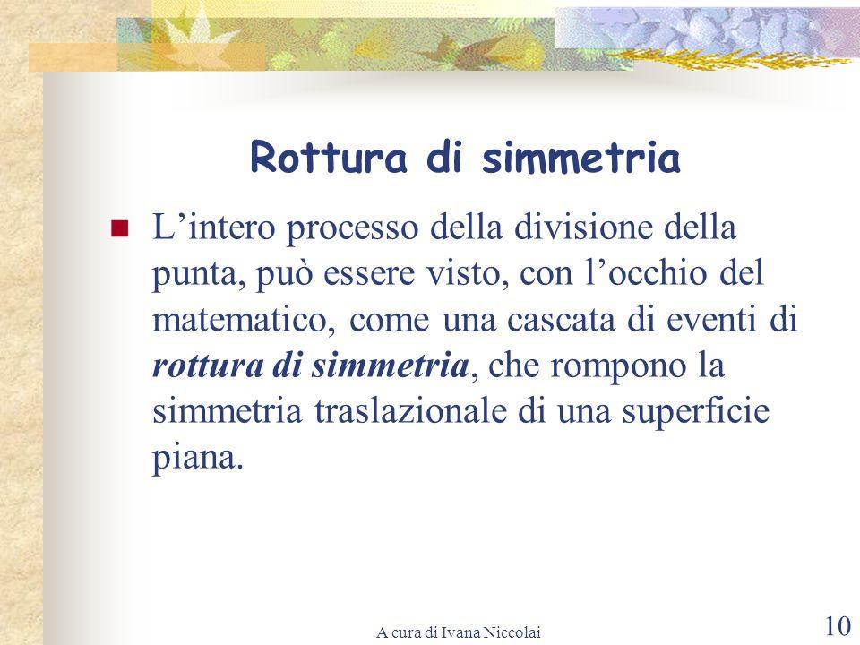 A cura di Ivana Niccolai 10 Rottura di simmetria Lintero processo della divisione della punta, può essere visto, con locchio del matematico, come una