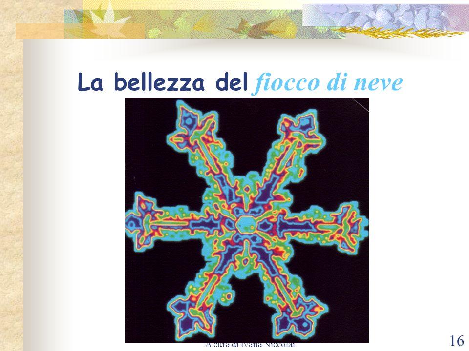 A cura di Ivana Niccolai 16 La bellezza del fiocco di neve