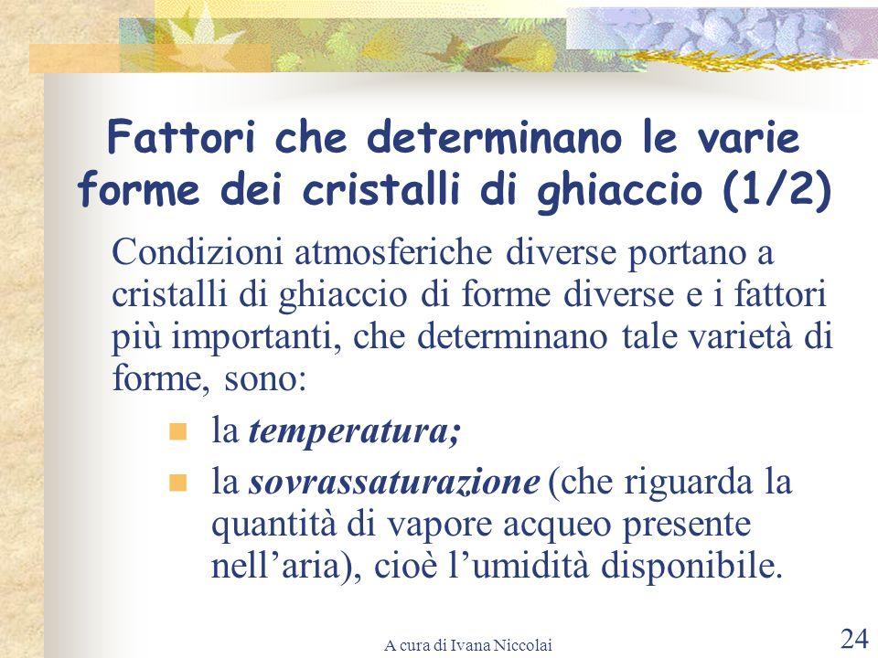 A cura di Ivana Niccolai 24 Fattori che determinano le varie forme dei cristalli di ghiaccio (1/2) Condizioni atmosferiche diverse portano a cristalli