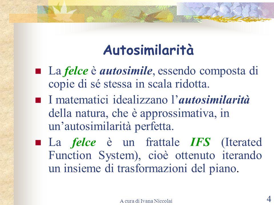 A cura di Ivana Niccolai 4 Autosimilarità La felce è autosimile, essendo composta di copie di sé stessa in scala ridotta. I matematici idealizzano lau