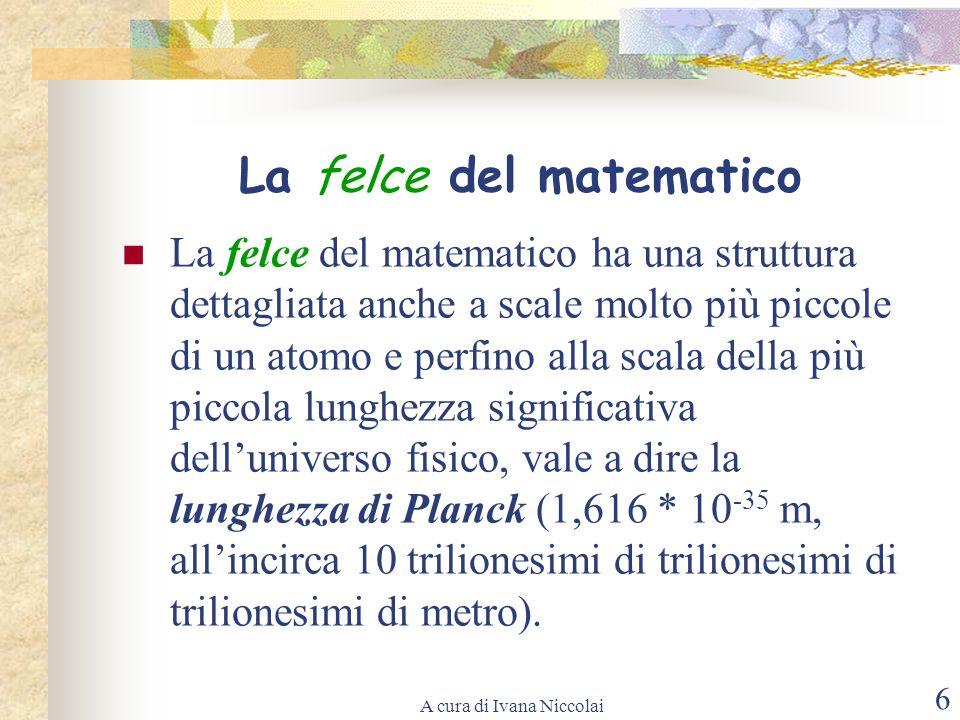 A cura di Ivana Niccolai 6 La felce del matematico La felce del matematico ha una struttura dettagliata anche a scale molto più piccole di un atomo e