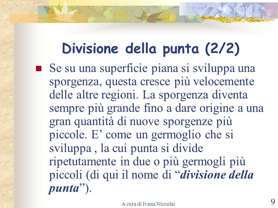 A cura di Ivana Niccolai 9 Divisione della punta (2/2) Se su una superficie piana si sviluppa una sporgenza, questa cresce più velocemente delle altre