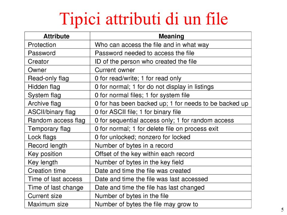 5 Tipici attributi di un file