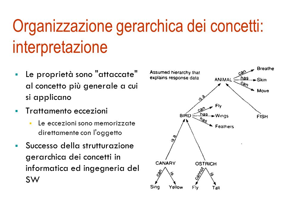 Organizzazione gerarchica dei concetti: esperimenti (Collins, Quillian, 1969) Domande: 1. Un canarino è un uccello? 2. Un canarino vola? 3. Un canarin