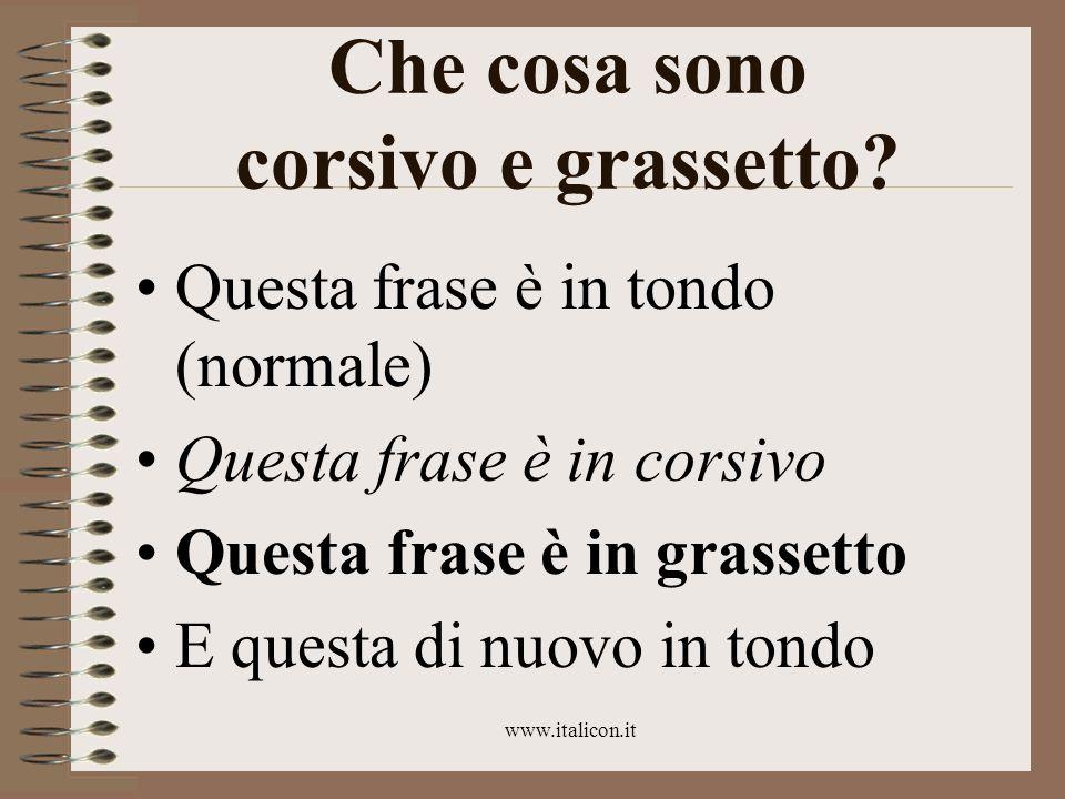 www.italicon.it Che cosa sono corsivo e grassetto? Questa frase è in tondo (normale) Questa frase è in corsivo Questa frase è in grassetto E questa di