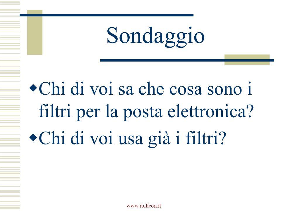 www.italicon.it Sondaggio Chi di voi sa che cosa sono i filtri per la posta elettronica.