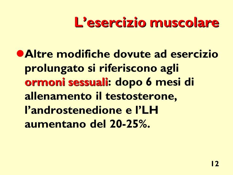 12 Lesercizio muscolare ormoni sessuali Altre modifiche dovute ad esercizio prolungato si riferiscono agli ormoni sessuali: dopo 6 mesi di allenamento