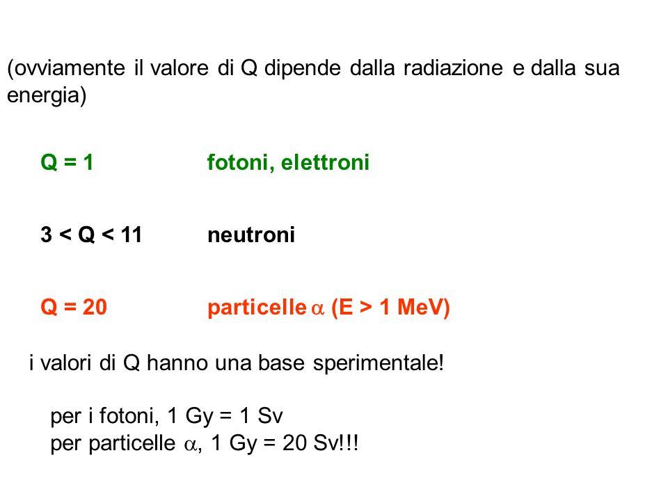 (ovviamente il valore di Q dipende dalla radiazione e dalla sua energia) Q = 1 3 < Q < 11 Q = 20 fotoni, elettroni neutroni particelle (E > 1 MeV) i v