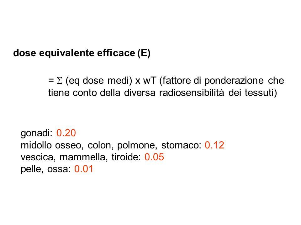 dose equivalente efficace (E) = (eq dose medi) x wT (fattore di ponderazione che tiene conto della diversa radiosensibilità dei tessuti) gonadi: 0.20