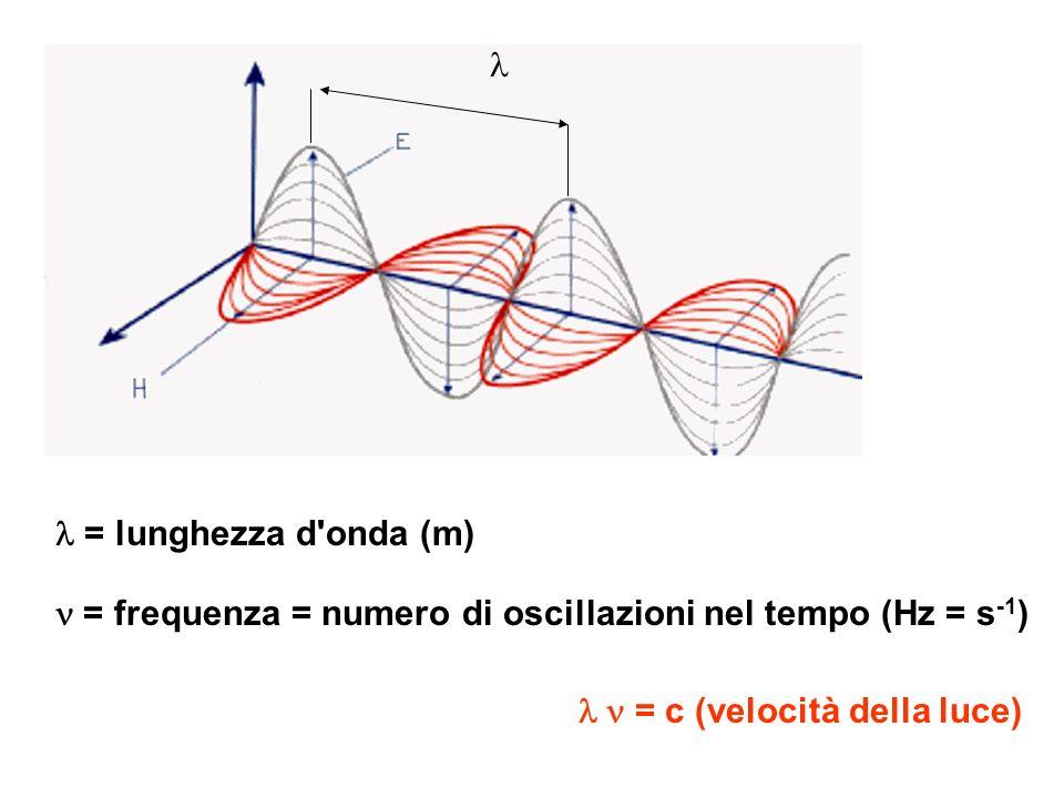 = lunghezza d'onda (m) = frequenza = numero di oscillazioni nel tempo (Hz = s -1 ) = c (velocità della luce)