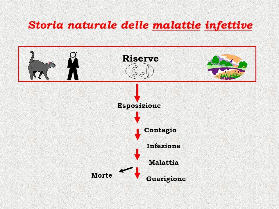 malattieinfettive Storia naturale delle malattie infettive Riserve Esposizione Contagio Morte Guarigione Malattia Infezione