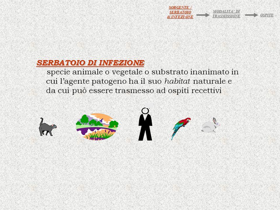 SERBATOIO DI INFEZIONE specie animale o vegetale o substrato inanimato in cui lagente patogeno ha il suo habitat naturale e da cui può essere trasmesso ad ospiti recettivi SORGENTE / SERBATOIO di INFEZI\ONE MODALITA DI TRASMISSIONE OSPITE