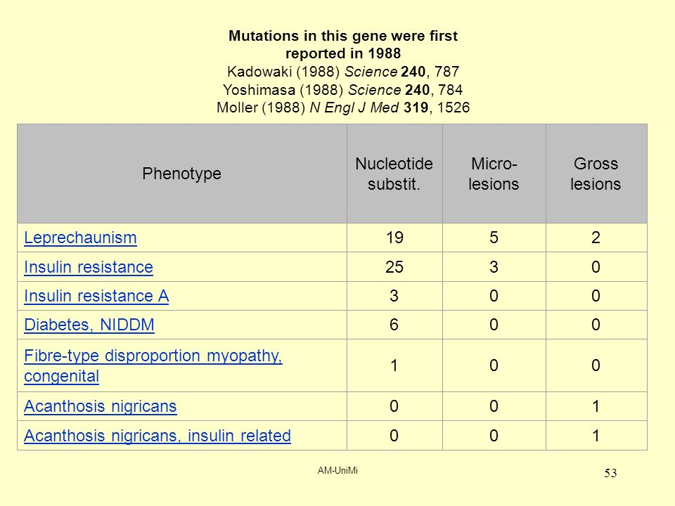 AM-UniMi 53 Phenotype Nucleotide substit.