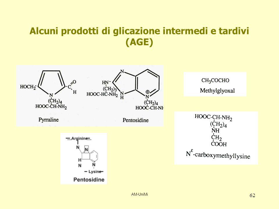 AM-UniMi 62 Alcuni prodotti di glicazione intermedi e tardivi (AGE)