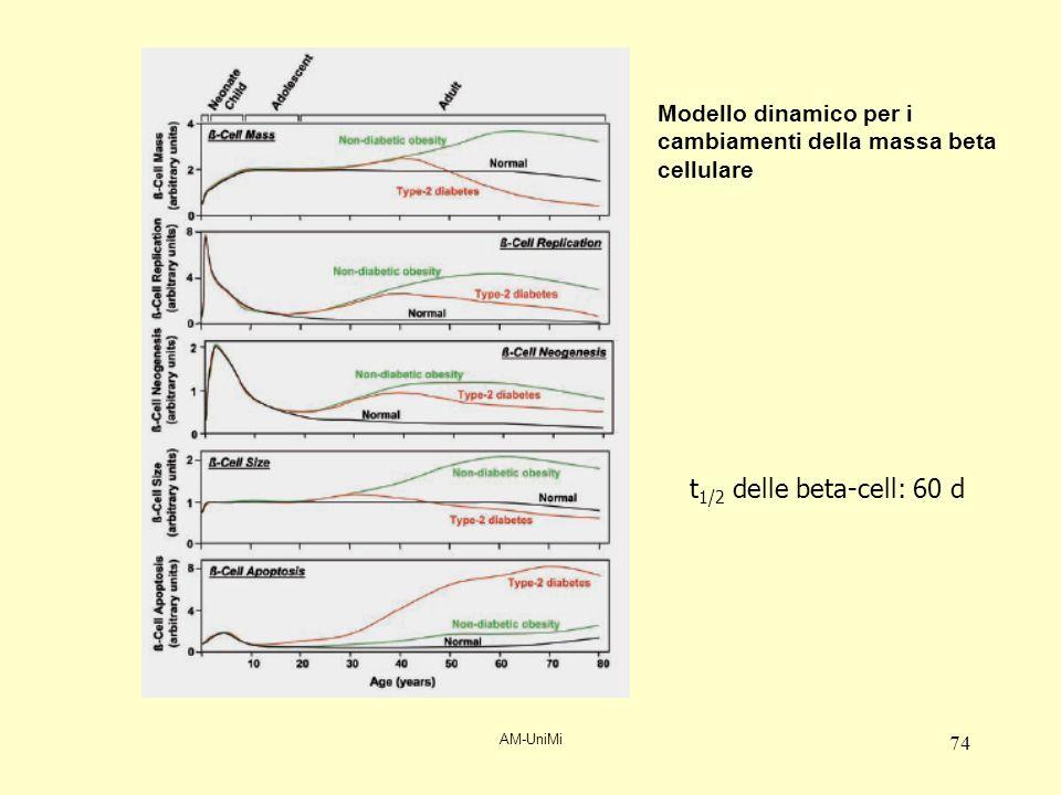 AM-UniMi 74 Modello dinamico per i cambiamenti della massa beta cellulare t 1/2 delle beta-cell: 60 d