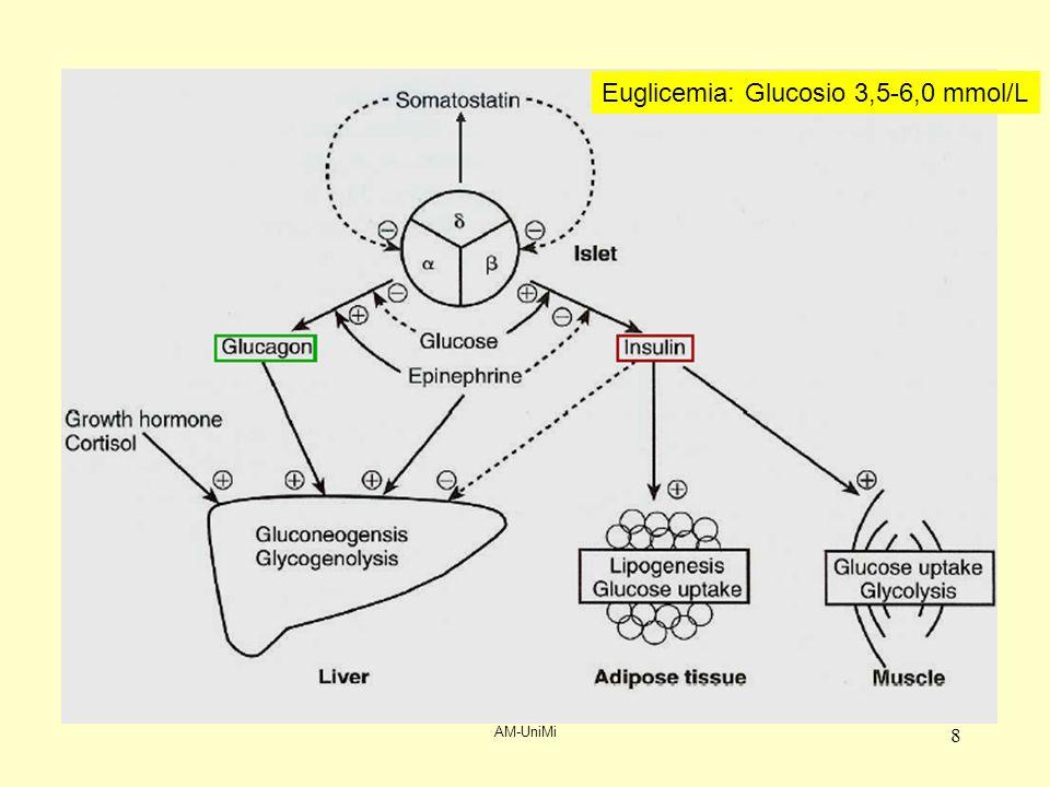 AM-UniMi 9 Segni, sintomi e conseguenze dellipoglicemia Morte Danni cerebrali permanenti Convulsioni Coma Letargia Sintomi da neuroglicopenia Controregolazione Sfumata sintomatologia neurologica