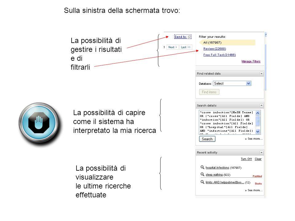 Sulla sinistra della schermata trovo: La possibilità di gestire i risultati e di filtrarli La possibilità di capire come il sistema ha interpretato la