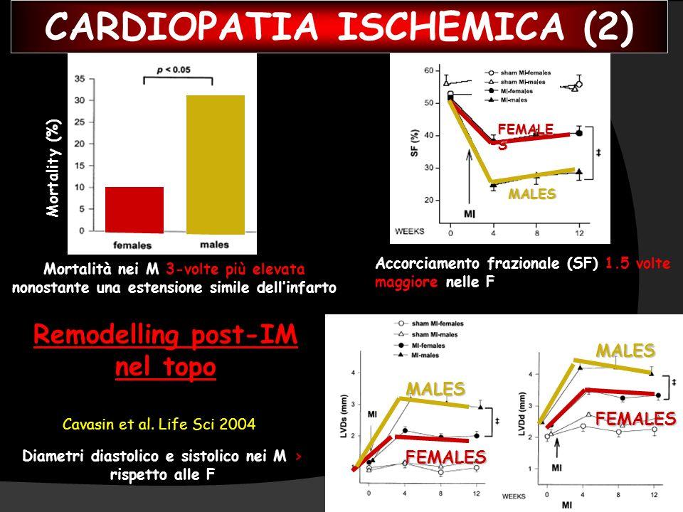 Cavasin et al. Life Sci 2004 Remodelling post-IM nel topo Mortalità nei M 3-volte più elevata nonostante una estensione simile dellinfarto Mortality (