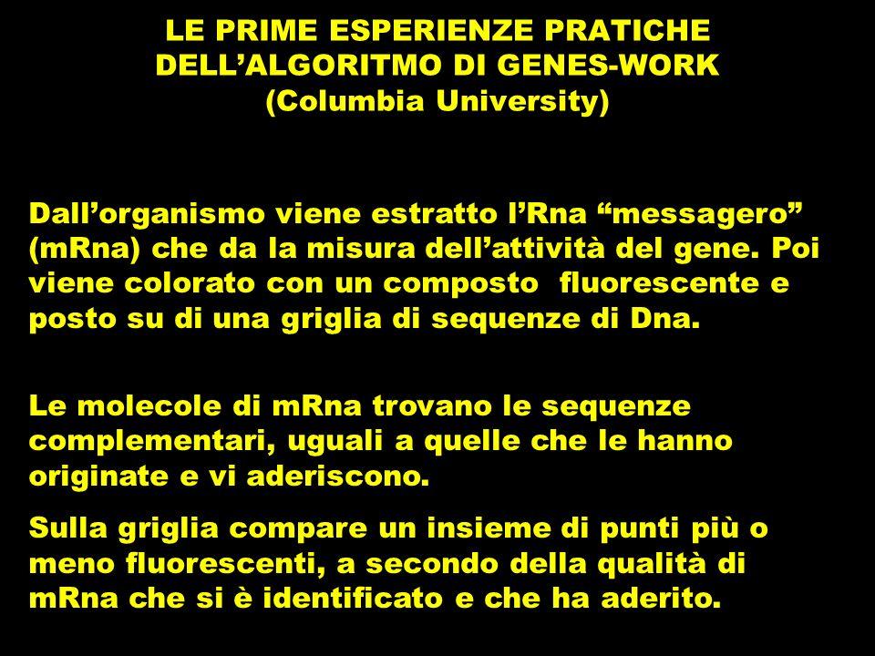 LE PRIME ESPERIENZE PRATICHE DELLALGORITMO DI GENES-WORK (Columbia University) Dallorganismo viene estratto lRna messagero (mRna) che da la misura dellattività del gene.