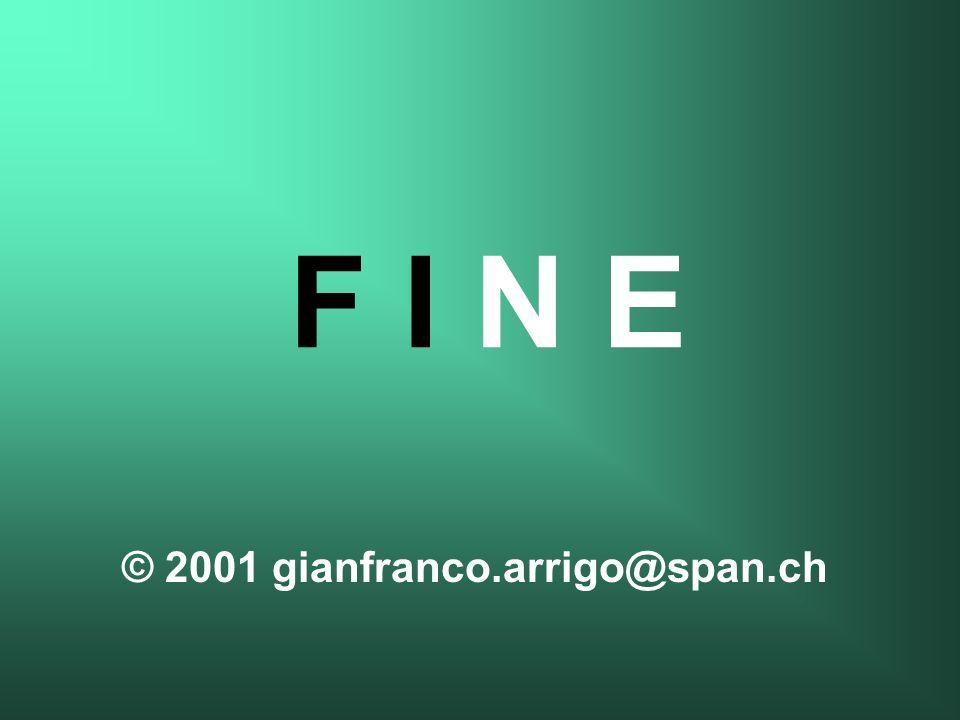 © 2001 gianfranco.arrigo@span.ch F I N E