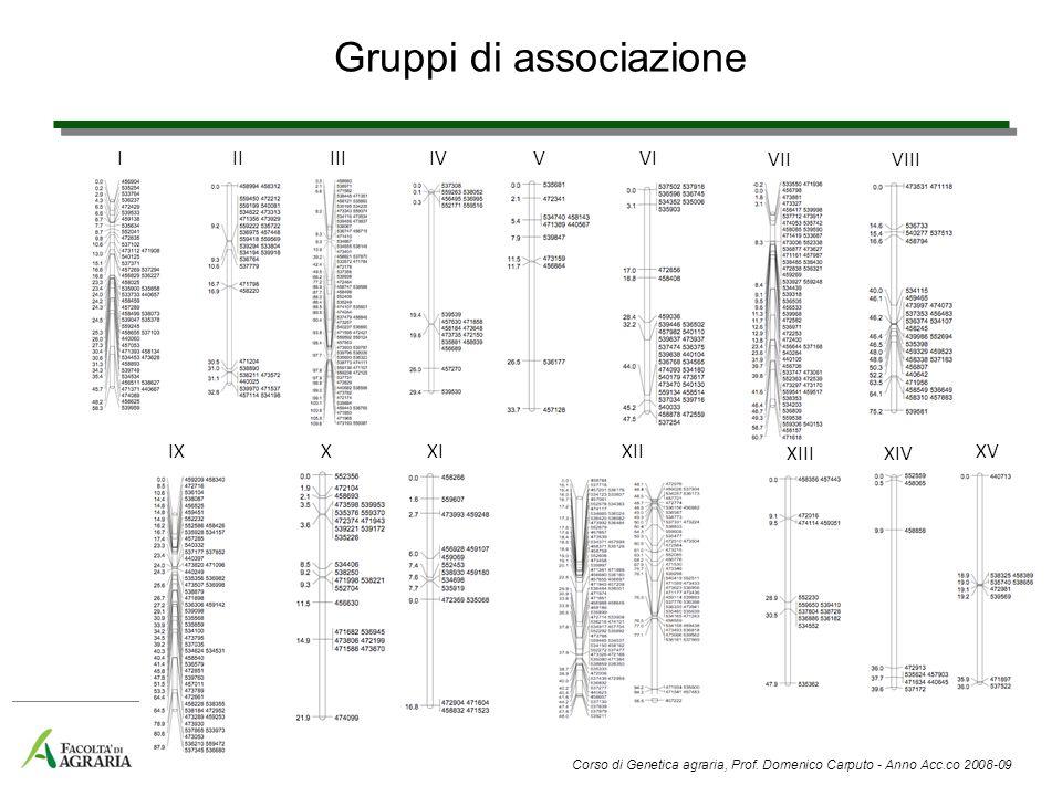 Genomi vegetali completamente sequenziati Arabidopsis thaliana Riso Vite Pomodoro Patata Soia Pioppo Tartufo Sequenziamento in corso Mais Orzo Erba medica Lotus Cavolfiore Banana Melo Frumento