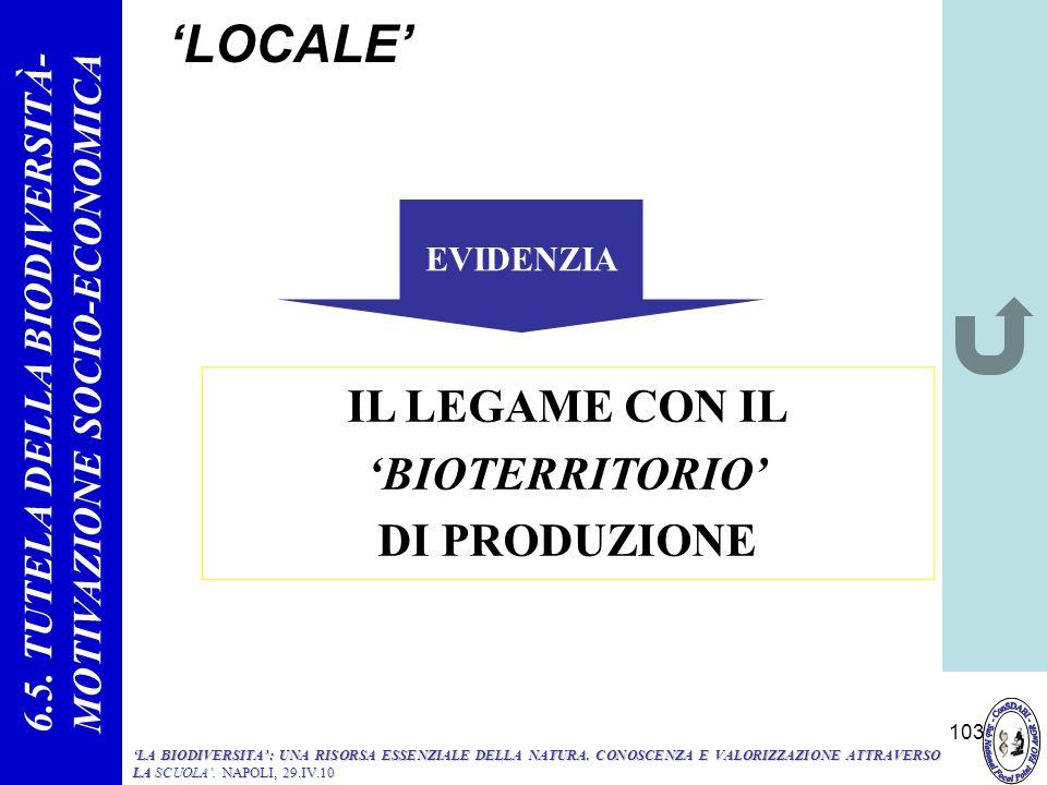 103 LOCALE IL LEGAME CON IL BIOTERRITORIO DI PRODUZIONE EVIDENZIA 6.5. TUTELA DELLA BIODIVERSITÀ- MOTIVAZIONE SOCIO-ECONOMICA LA BIODIVERSITA: UNA RIS