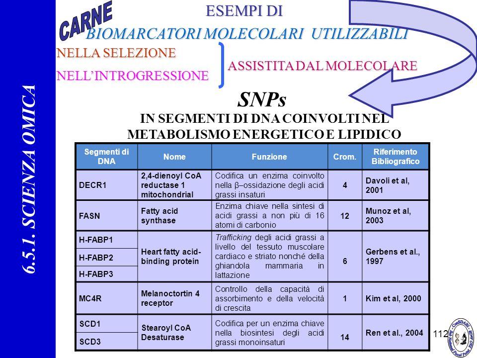 112 ESEMPI DI BIOMARCATORI MOLECOLARI UTILIZZABILIBIOMARCATORI MOLECOLARI UTILIZZABILI SNPs IN SEGMENTI DI DNA COINVOLTI NEL METABOLISMO ENERGETICO E