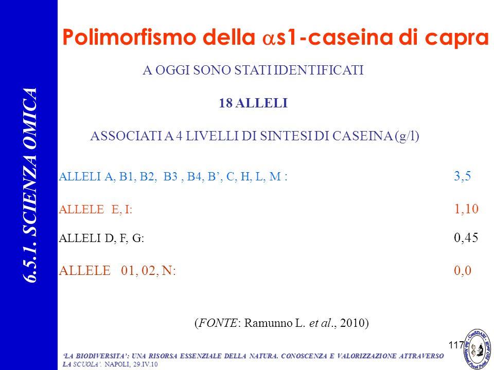117 Polimorfismo della s1-caseina di capra A OGGI SONO STATI IDENTIFICATI 18 ALLELI ASSOCIATI A 4 LIVELLI DI SINTESI DI CASEINA (g/l) 6.5.1. SCIENZA O