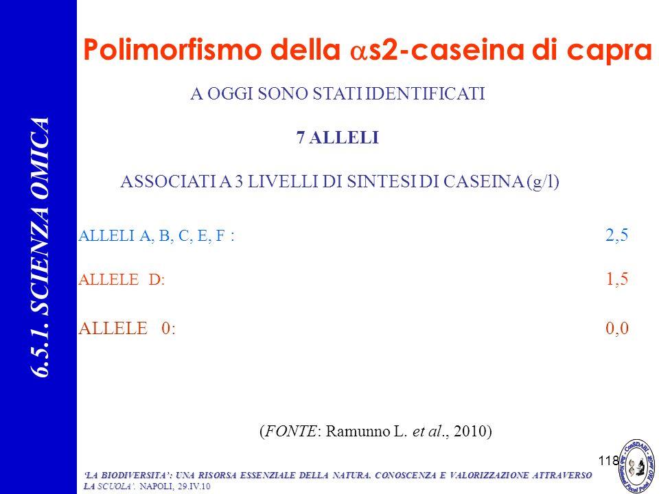 118 Polimorfismo della s2-caseina di capra A OGGI SONO STATI IDENTIFICATI 7 ALLELI ASSOCIATI A 3 LIVELLI DI SINTESI DI CASEINA (g/l) 6.5.1. SCIENZA OM