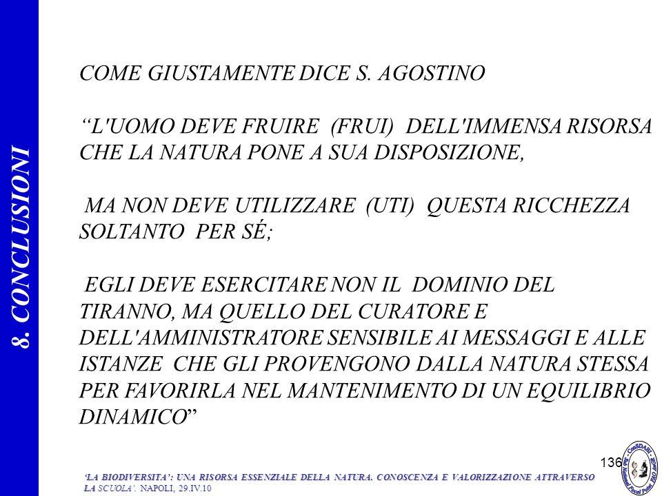 136 COME GIUSTAMENTE DICE S. AGOSTINO L'UOMO DEVE FRUIRE (FRUI) DELL'IMMENSA RISORSA CHE LA NATURA PONE A SUA DISPOSIZIONE, MA NON DEVE UTILIZZARE (UT