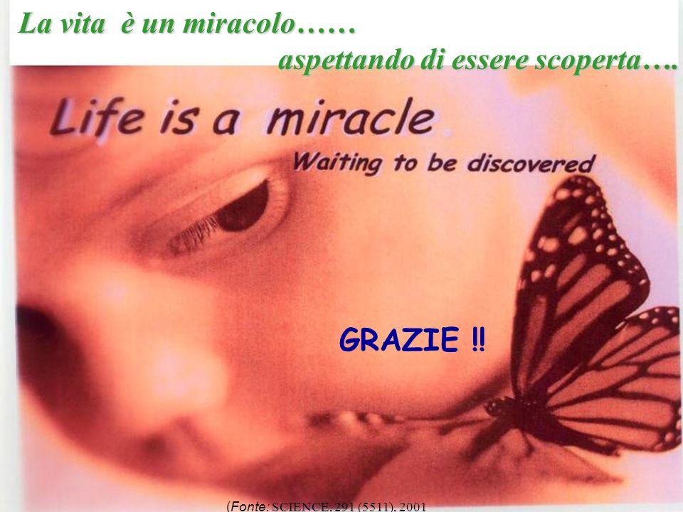 138 La vita è un miracolo…… aspettando di essere scoperta…. aspettando di essere scoperta…. (Fonte: SCIENCE, 291 (5511), 2001 GRAZIE !!