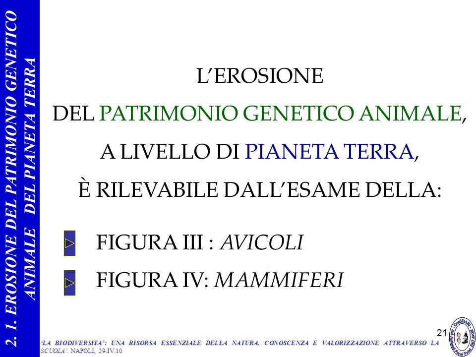 21 FIGURA III : AVICOLI FIGURA IV: MAMMIFERI 2. 1. EROSIONE DEL PATRIMONIO GENETICO ANIMALE DEL PIANETA TERRA LEROSIONE DEL PATRIMONIO GENETICO ANIMAL