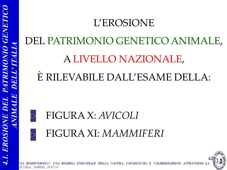 42 FIGURA X: AVICOLI FIGURA XI: MAMMIFERI 4.1. EROSIONE DEL PATRIMONIO GENETICO ANIMALE DELL ITALIA LEROSIONE DEL PATRIMONIO GENETICO ANIMALE, A LIVEL
