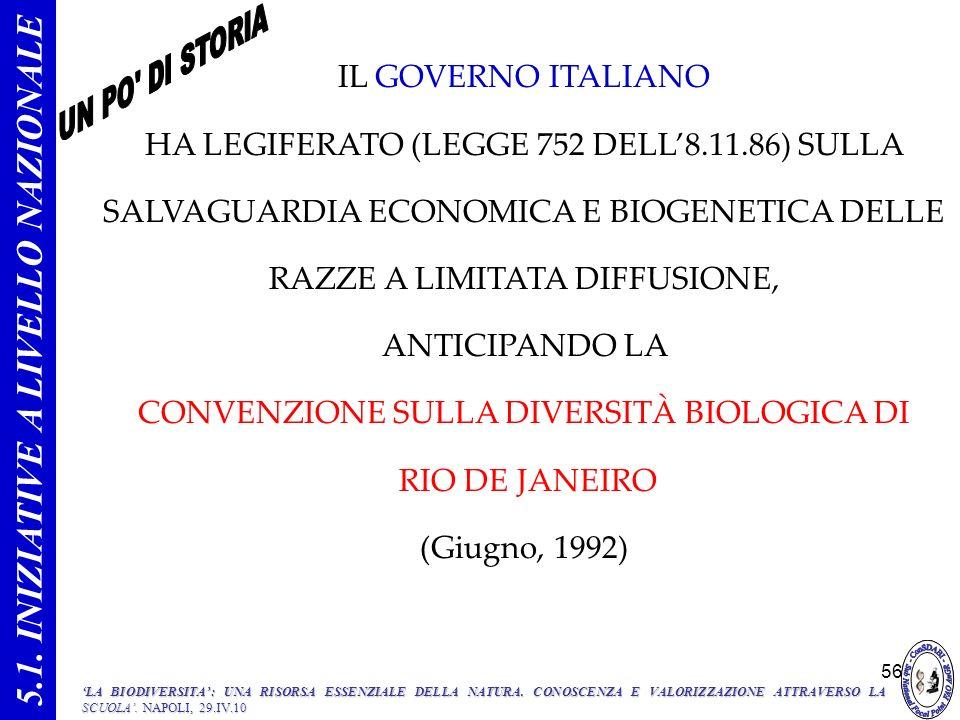 56 IL GOVERNO ITALIANO HA LEGIFERATO (LEGGE 752 DELL8.11.86) SULLA SALVAGUARDIA ECONOMICA E BIOGENETICA DELLE RAZZE A LIMITATA DIFFUSIONE, ANTICIPANDO