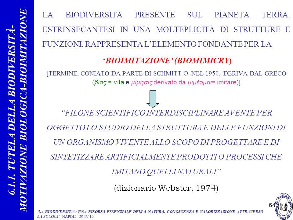 64 LA BIODIVERSITÀ PRESENTE SUL PIANETA TERRA, ESTRINSECANTESI IN UNA MOLTEPLICITÀ DI STRUTTURE E FUNZIONI, RAPPRESENTA LELEMENTO FONDANTE PER LA BIOI