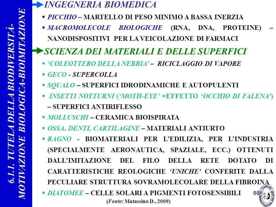 66 INGEGNERIA BIOMEDICA PICCHIO – MARTELLO DI PESO MINIMO A BASSA INERZIA MACROMOLECOLE BIOLOGICHE (RNA, DNA, PROTEINE) – NANODISPOSITIVI PER LA VEICO
